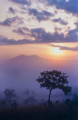 Thung Salang Luang National Park, Sawanna of Thailand