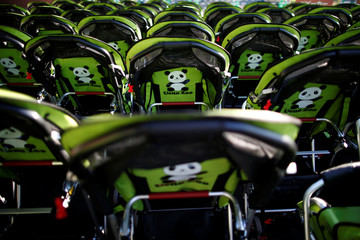 Rental baby buggies featuring giant panda are seen at Ueno Zoological Gardens in Tokyo