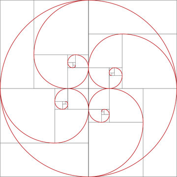 Fibonacci spiral. Golden ratio