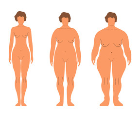 Fat European Women. Cartoon style. Human front side Silhouette. Isolated on White Background. Vector illustration
