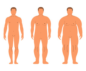 Fat European Women and Men. Cartoon style. Human front side Silhouette. Isolated on White Background. Vector illustration