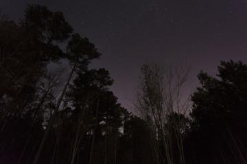 Stars in a North Carolina sky