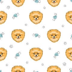Seamless pattern with cute pomeranian dog. Vector background with hand drawn puppies.
