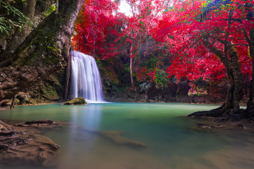 Waterfall at colorful autumn forest. Waterfall beautiful asia southeast asia.