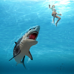 Great White Shark Attacks Female Swimmer