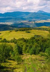 beautiful countryside of Crapathians in early autumn. forested hills and mountain ridge with high peak in the distance. lovely sunny weather with cloudy sky