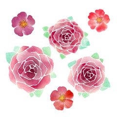 Watercolor roses and wild flowers. Elegant retro elements for greeting and wedding cards.