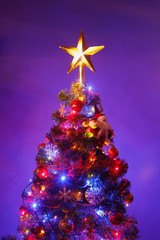 Christmas tree with festive star, purple background