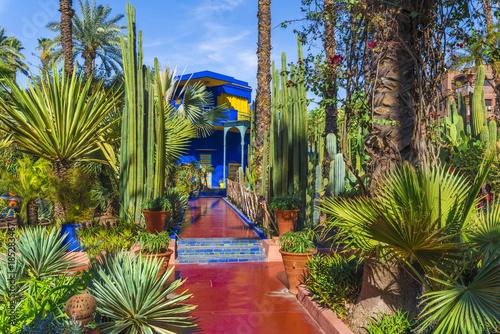 le jardin majorelle amazing tropical garden in marrakech morocco - Jardin Marrakech