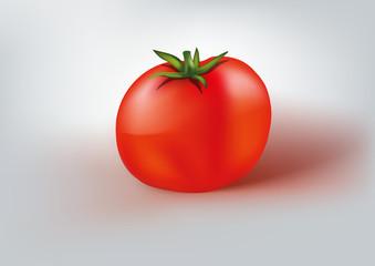 tomate - légume - alimentation - sauce tomate - illustration -  nourriture - rouge - santé - salade