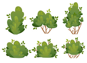 Set of natural bush and garden trees for park cottage and yard vector illustration isolated on white background website page and mobile app design