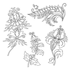 contour of flower with ornaments