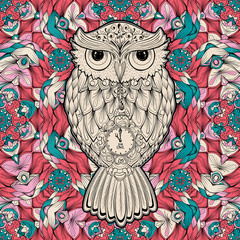 Owl bird isolated on milticolored background, vector illustration. Wild night owl bird hand drawn artwork