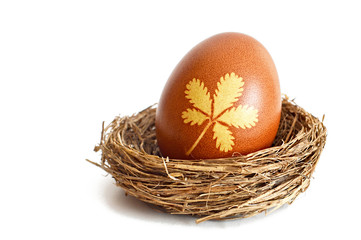 Easter egg in the nest colored with onion peel  isolated on white background