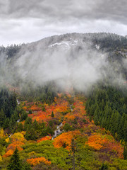 Amazing fall foliage in stormy weather at the Coquihalla Summit, British Columbia, Canada