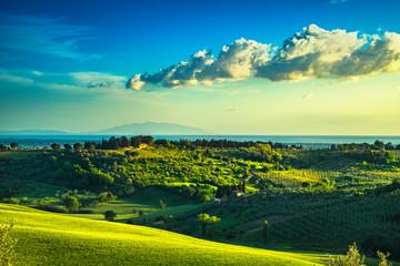 Maremma countryside, sunset landscape. Elba island on horizon. Tuscany, Italy.