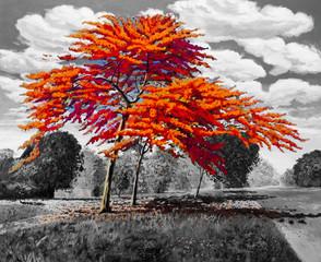 Oil painting landscape original red orange color of Peacock flowers.
