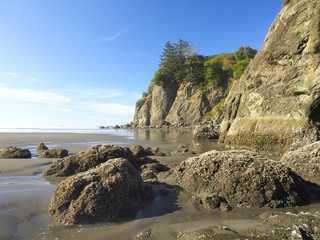Wall Mural - Rocky Coastline Ruby Beach Washington