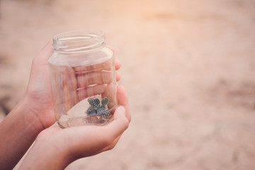 Hands of girl holding little plant in glass jar on cracked dry background, concept drought and save environment