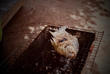 Grilled fish on charcoal stove.