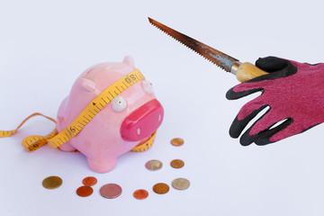 Piggy Bank and thief