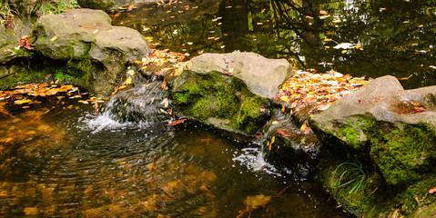 Stone bridge and colorful leaves in creek with waterfall. Autumn in forest.