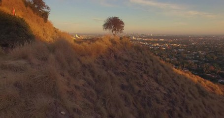 Fotobehang - Aerial flying backwards Hollywood Hills scenic view Los Angeles cityscape sunset