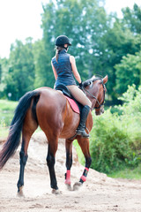 Young lady riding a horse in forest. Training process