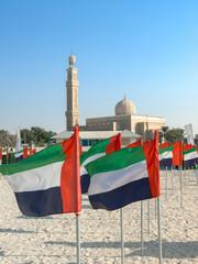Dubai Kite Beach Flags