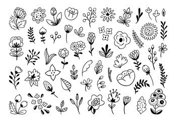 Hand drawn flowers vector set. Florals and leaves black and white illustrations