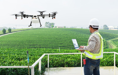 .Technician farmer use wifi computer control agriculture drone fly to sprayed fertilizer on the tea fields