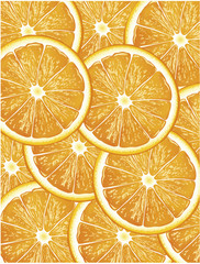 orange slices vector background
