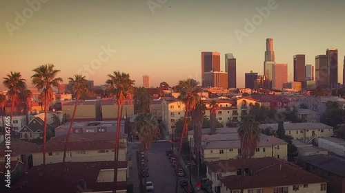 Fotobehang Pan across downtown Los Angeles skyline through row of palm trees. Aerial view.