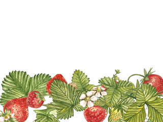 Horizontal banners with ripe red berry strawberry on white background. Design for packaging, natural cosmetics, health care products. With place for text.