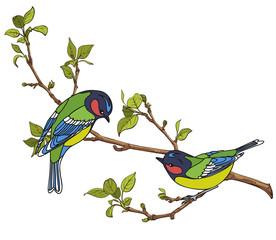 Wall Murals Birds, bees birds on a branch