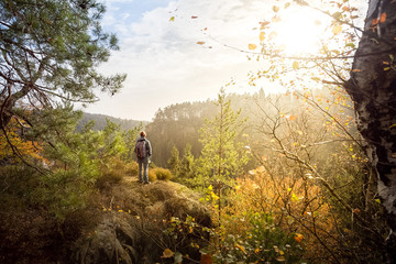 Afternoon walk in the mountains. Beautiful sunshine in this autumn. Great wether in fall for wanderlust in this landscapes. Colorful foliage and leaves in the forests. Sunlight and colourful nature. Wall mural