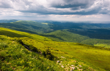 grassy slopes of Carpathians before the storm. beautiful mountainous landscape in summertime
