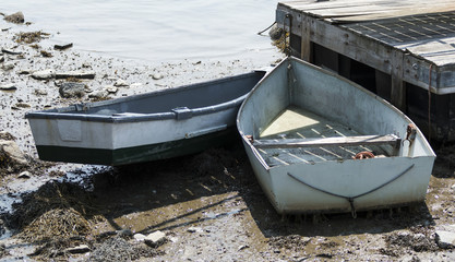 Two row boats stuck on the mud during low tide in Maine USA