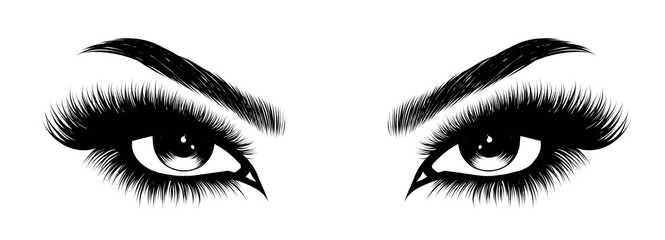 Hand-drawn woman's sexy makeup look with perfectly perfectly shaped eyebrows and extra full lashes. Idea for business visit card, typography vector.Perfect salon look Wall mural