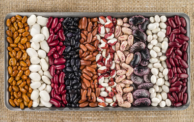 A set of various beans on a background of rough textures texture.