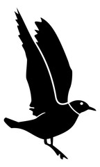 the silhouette of the bird landed