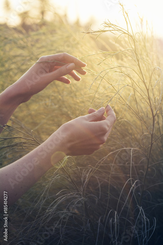Young female touching the grass field  Unity with nature concept