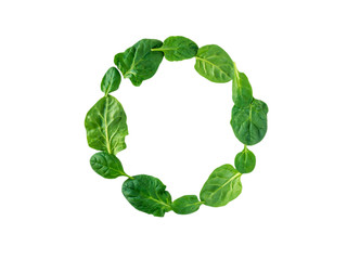 Round wreath of spinach leaves top view