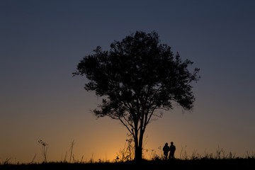 silhouette man and women standing under the tree in sunset time