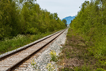 railway leading to far far away with trees on both sides