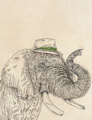 an elephant with a hat