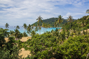 Paradise seaside of malaysian Redang island with magnificent tropical vegetation in sunny day, view on a lagoon from hill