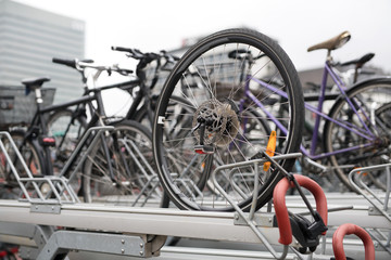 Many bicycles on parking