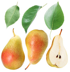 Green pear leaves and pear fruit. Clipping path.