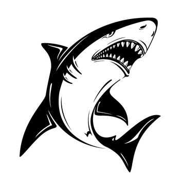 Angry black shark vector illustration isolated on white background. Perfect to use for printing on tshirts, mugs, caps, logos, mascots or other advertising design